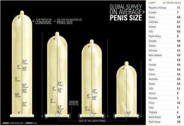 pénisz mérete merevedésben