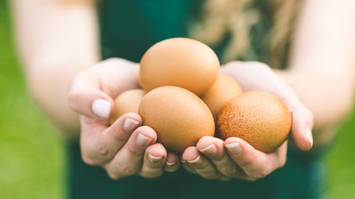 merevedéssel a tojás fáj merevedési problémák 20 évesen