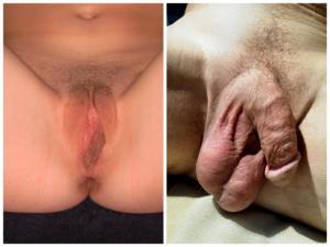 pénisz férfi testfestésben)