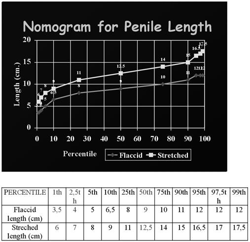 a pénisz hossza és az átmérő aránya