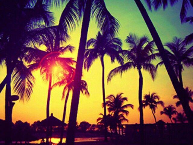 strand duci képek)
