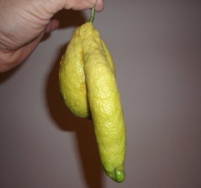 a péniszének mérete nem elégít ki)
