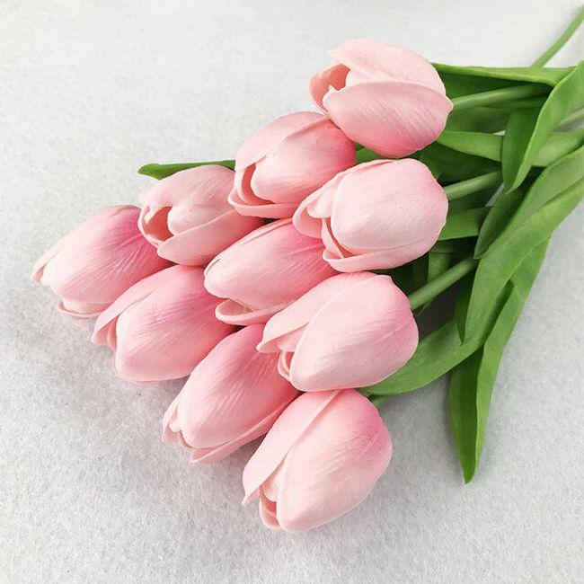 tulipán pénisz