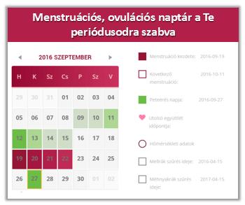 ovuláció merevedés nélkül)