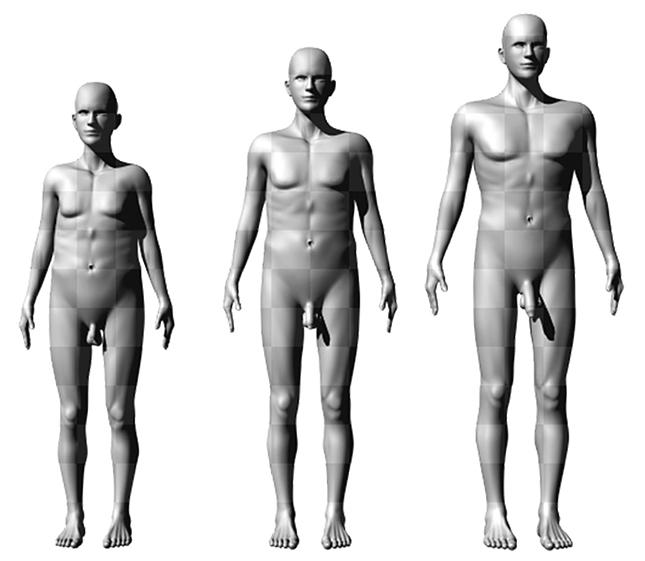 átlagos péniszméret a férfiaknál